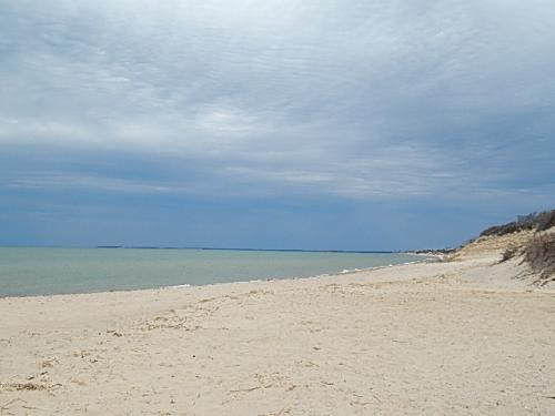 View of the low dunes at First Encounter Beach