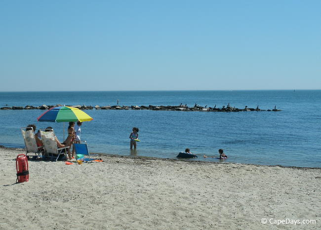 Parents and kids enjoying a Cape Cod beach