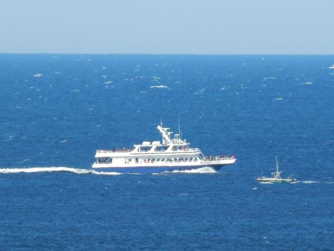 Whale watch boat off the Cape Cod coastline