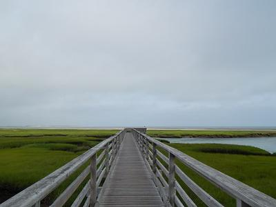 View from Bass Hole (Gray's Beach) Boardwalk