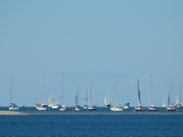 Start of the annual Figawi yacht race in Hyannis