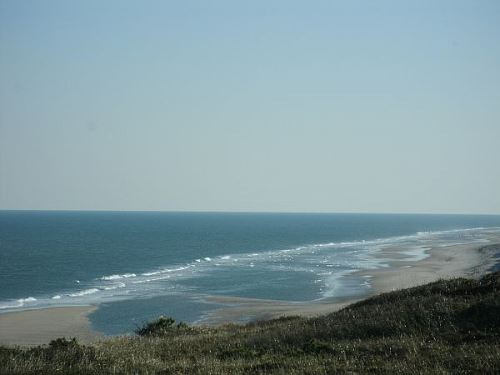 Wellfleet MA: The Best Cape Cod Vacation Town?