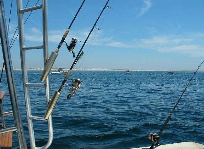 View of Provincetown shoreline from deck of a private charter boat