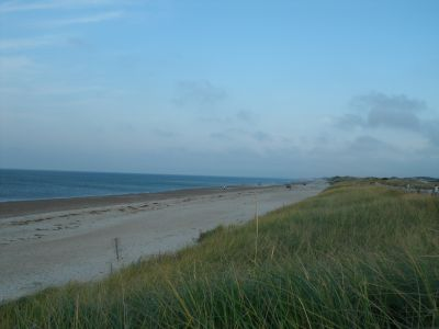 The expanse of Sandy Neck