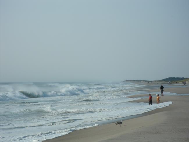 Nauset Beach in Orleans MA