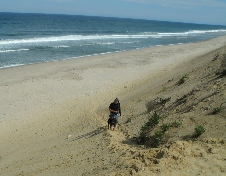 Dog and owner climbing up a dune at Cape Cod National Seashore