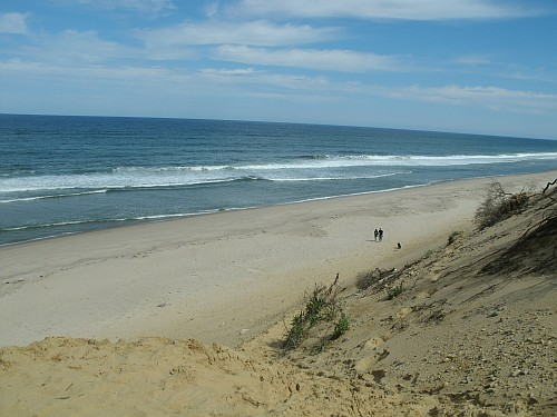 View from the top of the dunes at a Cape Cod beach
