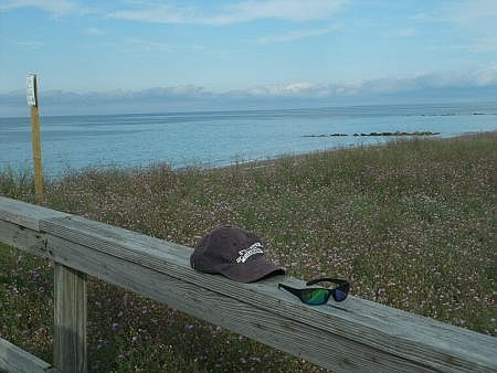 view from the boardwalk in sandwich ma