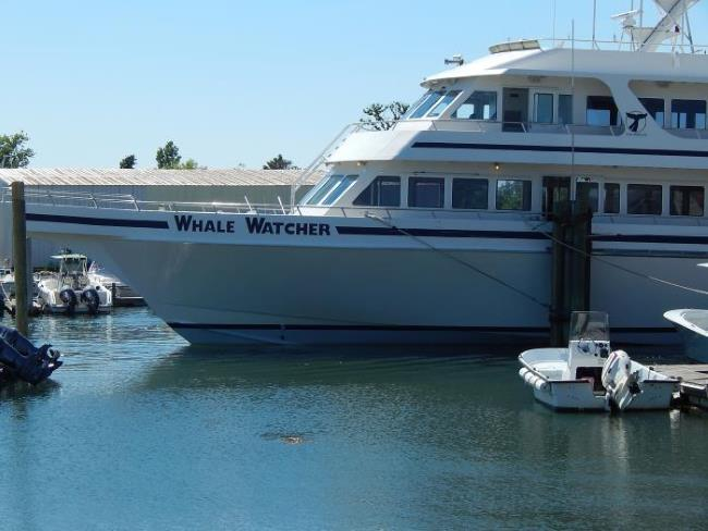 WhaleWatcher boat at the pier